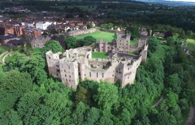 Ludlow Castle - Local Interests